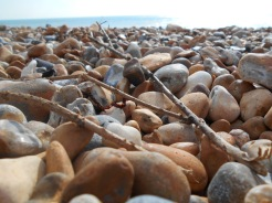 Shingle beach with twigs