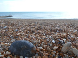Shingle beach with sea in background