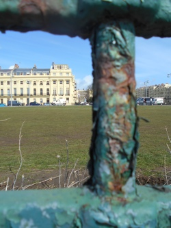 Brunswick Square in Focus