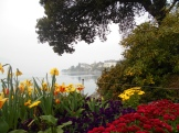 The Commune of Montreux keeps the lakeside in full bloom throughout the year